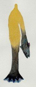 homme-bras-poisson